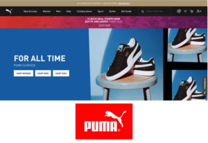 Read more about the article Puma